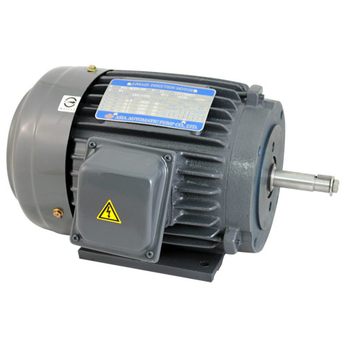 EVERGUSH Electric Motor(IEC Standard).